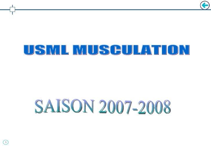 SAISON 2007-2008 USML MUSCULATION