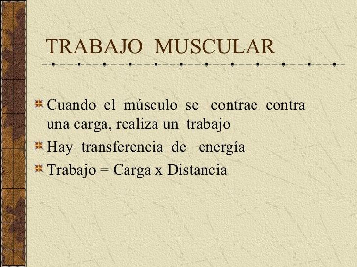 Musculo EsqueléTico Ii Complet Slide 3