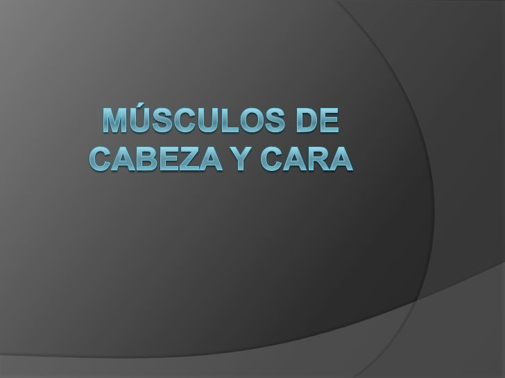 Músculos del cráneo                                  Musculo temporoparietalMusculo frontal                             Mu...