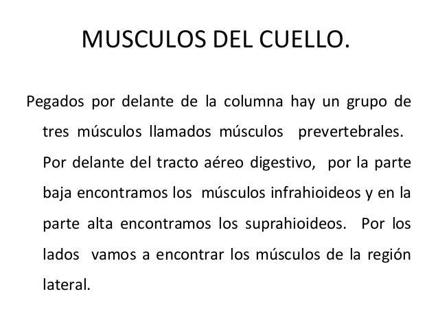 La osteocondrosis de la medida de su profiláctica