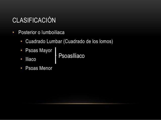 CLASIFICACIÓN • Posterior o lumboiliaca • Cuadrado Lumbar (Cuadrado de los lomos) • Psoas Mayor • Iliaco • Psoas Menor Pso...