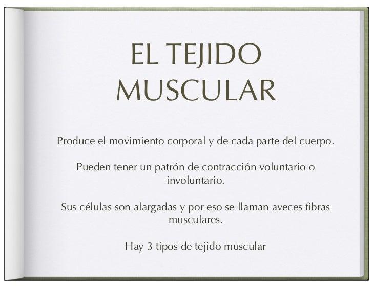 Musculos de la masticacion Slide 2