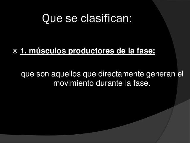Que se clasifican:  2. músculos facilitadores de la fase: Que como su nombre lo indica, son aquellos que por su acción fa...