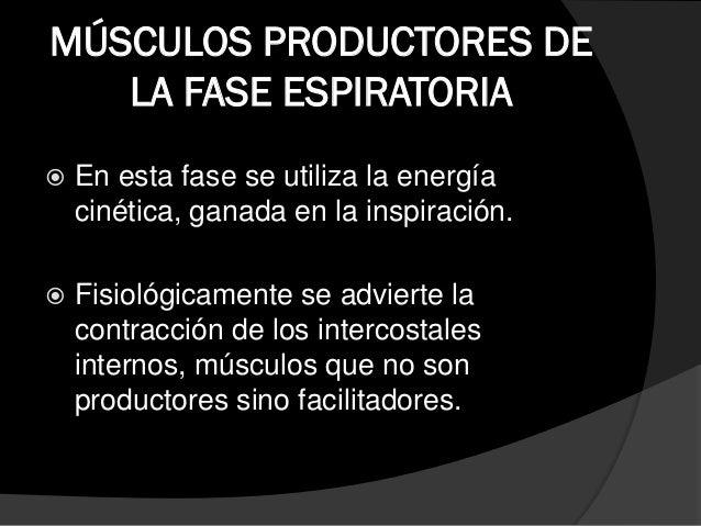 MÚSCULOS ACCEORIOS DE LA FASE ESPIRATORIA