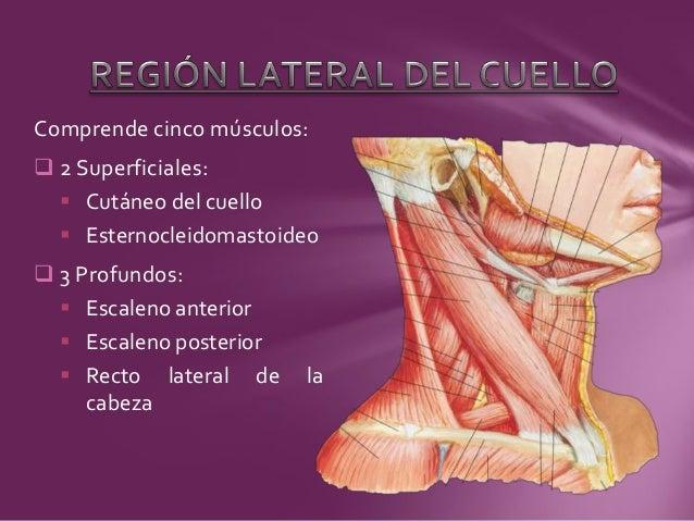 El vértigo a la osteocondrosis puede ser