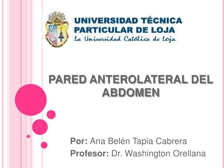 PARED ANTEROLATERAL DEL        ABDOMEN   Por: Ana Belén Tapia Cabrera   Profesor: Dr. Washington Orellana