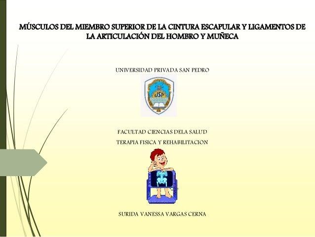MÚSCULOS DEL MIEMBRO SUPERIOR DE LA CINTURA ESCAPULAR Y LIGAMENTOS DE LA ARTICULACIÓN DEL HOMBRO Y MUÑECA UNIVERSIDAD PRIV...
