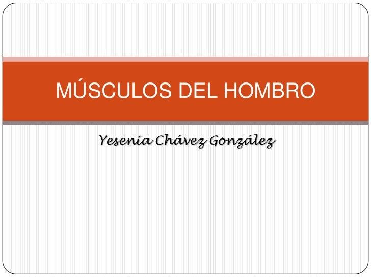 MÚSCULOS DEL HOMBRO   Yesenia Chávez González