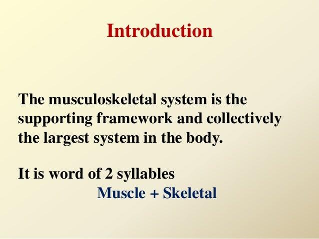 Musculoskeletal assessment Slide 3