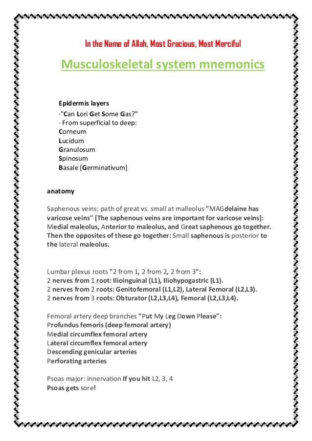 musculoskeletal-system-mnemonics-1-638.jpg?cb=1443810719