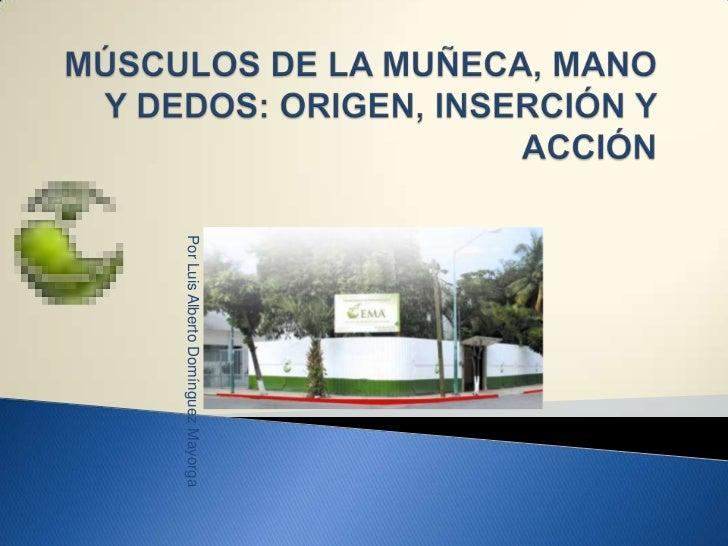 Por Luis Alberto Domínguez Mayorga