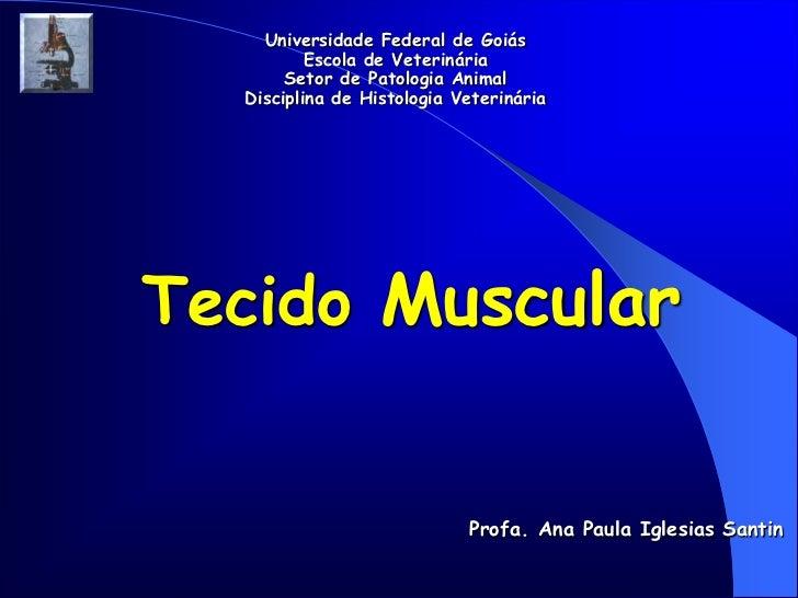 Universidade Federal de Goiás          Escola de Veterinária       Setor de Patologia Animal  Disciplina de Histologia Vet...