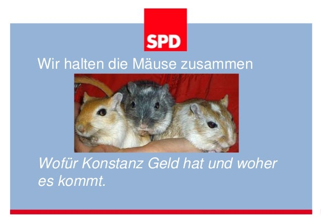 Wir halten die Mäuse zusammen Wofür Konstanz Geld hat und woher es kommt.