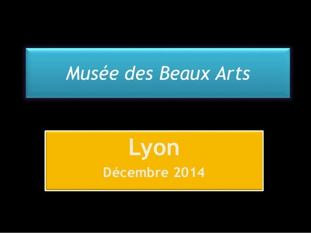 Musée des Beaux Arts  Lyon  Décembre 2014
