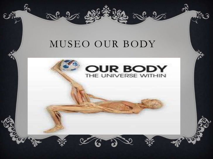 Museo ourbody<br />