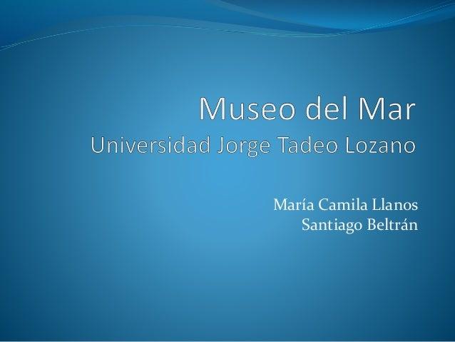 María Camila Llanos  Santiago Beltrán