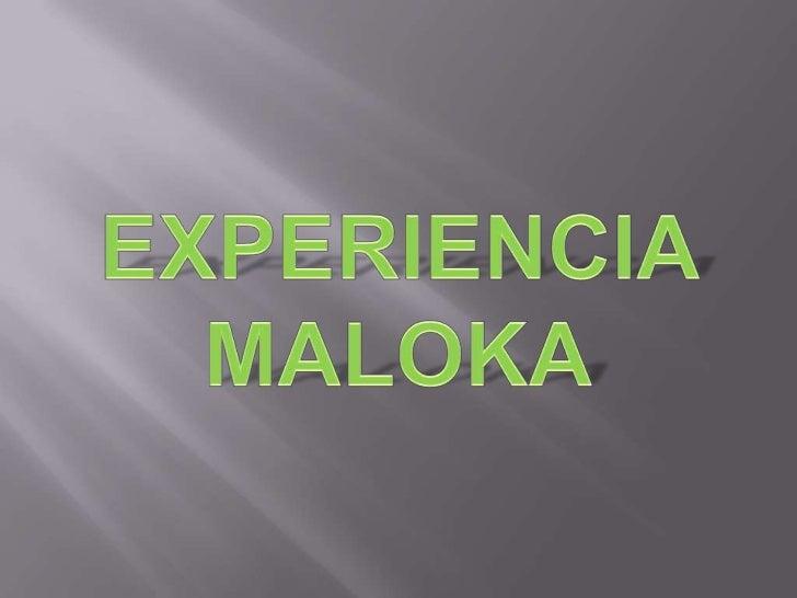 Maloka es un parquetemático sobre cienciay tecnología ubicadoen el barrio ciudadsalitre de la localidadde Fontibón.