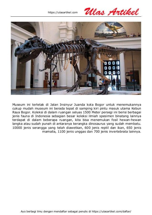 Museum zoologi bogor Slide 2
