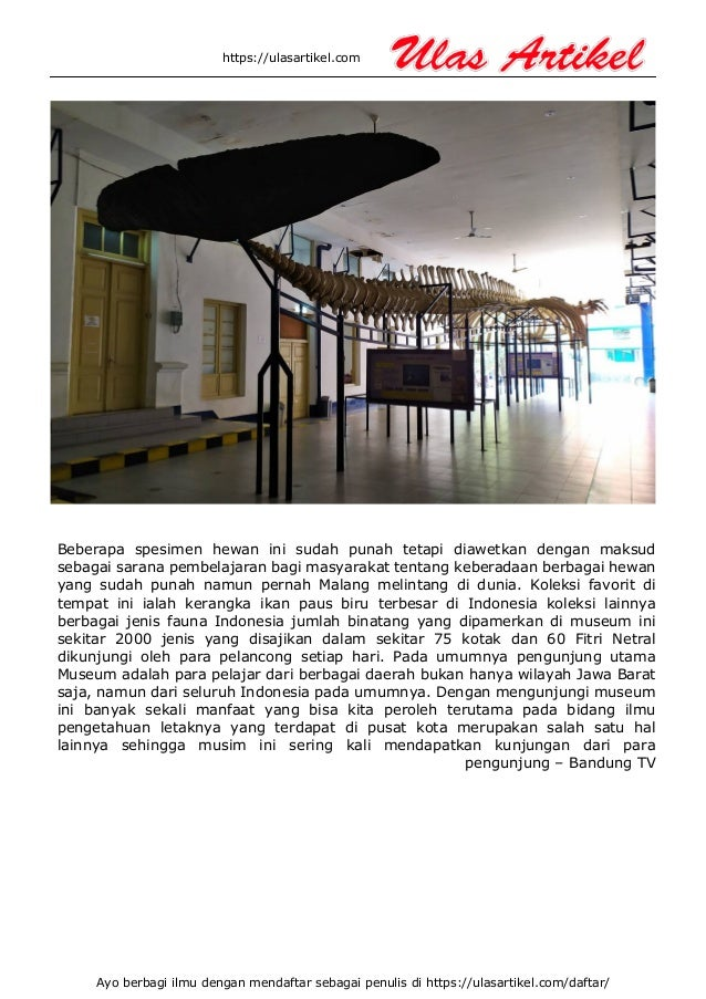 Museum zoologi bogor Slide 3
