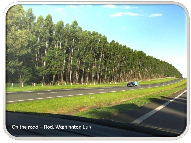 On the road – Rod. Washington Luis