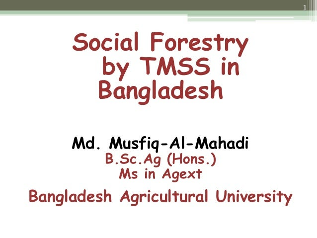 Social Forestry by TMSS in Bangladesh Md. Musfiq-Al-Mahadi B.Sc.Ag (Hons.) Ms in Agext Bangladesh Agricultural University 1