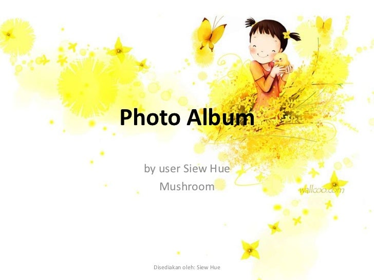 Photo Album by user Siew Hue    Mushroom  Disediakan oleh: Siew Hue