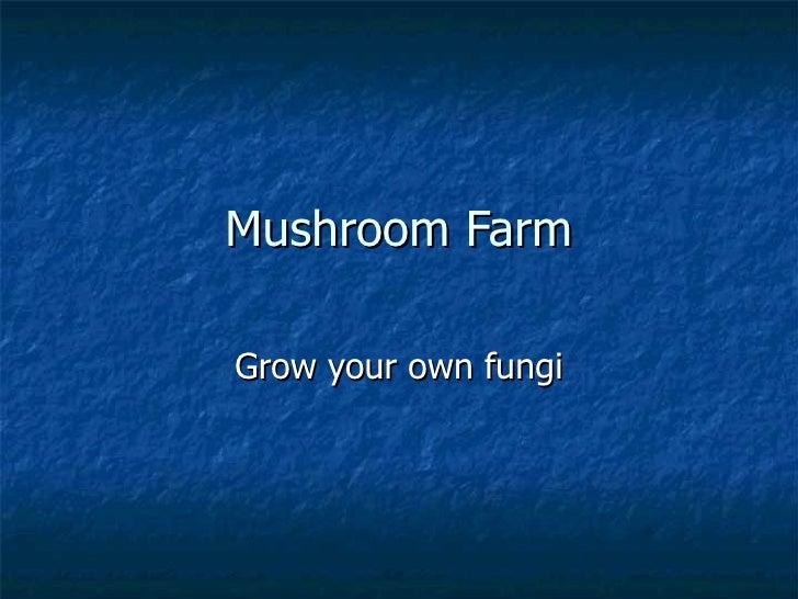 Mushroom Farm Grow your own fungi