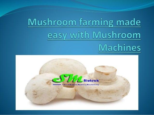 Mushroom Plant Setup | Mushroom Air Handling Unit - Mushroom