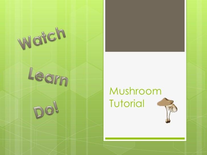 MushroomTutorial