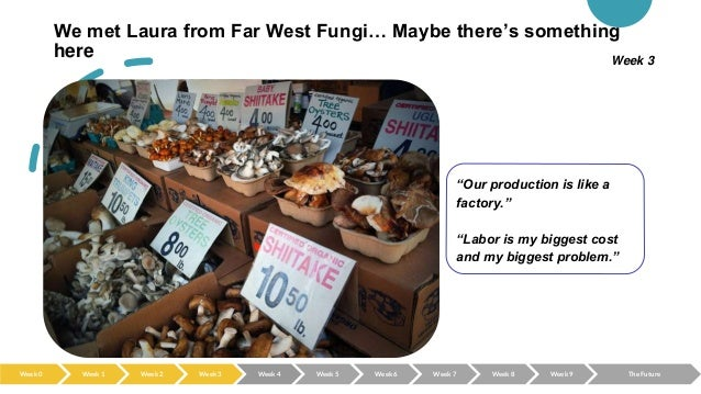 """We met Laura from Far West Fungi… Maybe there's something here """"Our production is like a factory."""" """"Labor is my biggest co..."""