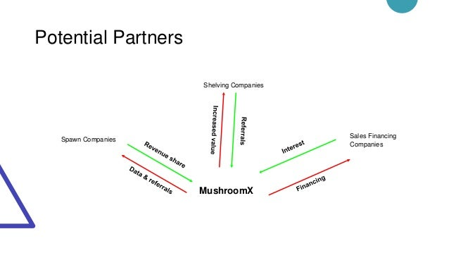 Potential Partners Spawn Companies Sales Financing Companies Shelving Companies MushroomX