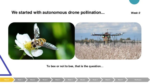 We started with autonomous drone pollination... To bee or not to bee, that is the question… Week 0 Week 0 Week 2 Week 3 We...