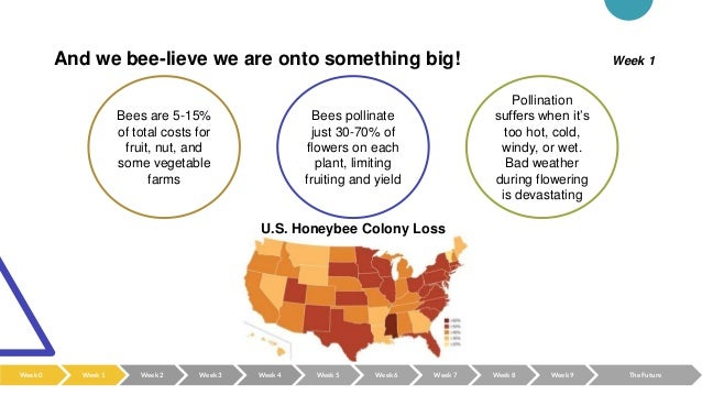 And we bee-lieve we are onto something big! Bees are 5-15% of total costs for fruit, nut, and some vegetable farms Bees po...