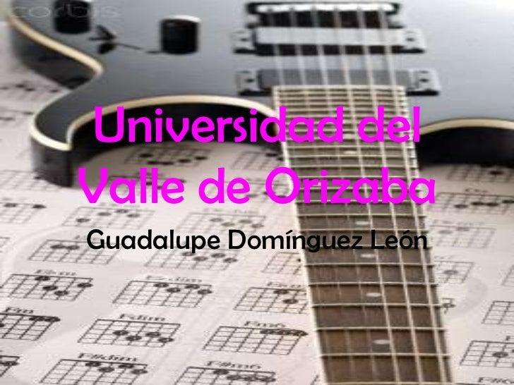Universidad del Valle de Orizaba<br />Guadalupe Domínguez León<br />