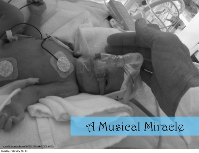 A Musical Miracle www.flickr.com/photos/45788203@N00/2750610155/  Sunday, February 16, 14