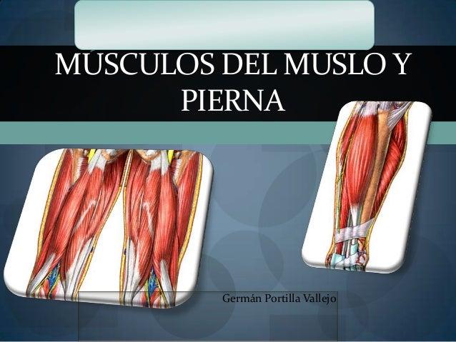 MÚSCULOS DEL MUSLO Y PIERNA Germán Portilla Vallejo