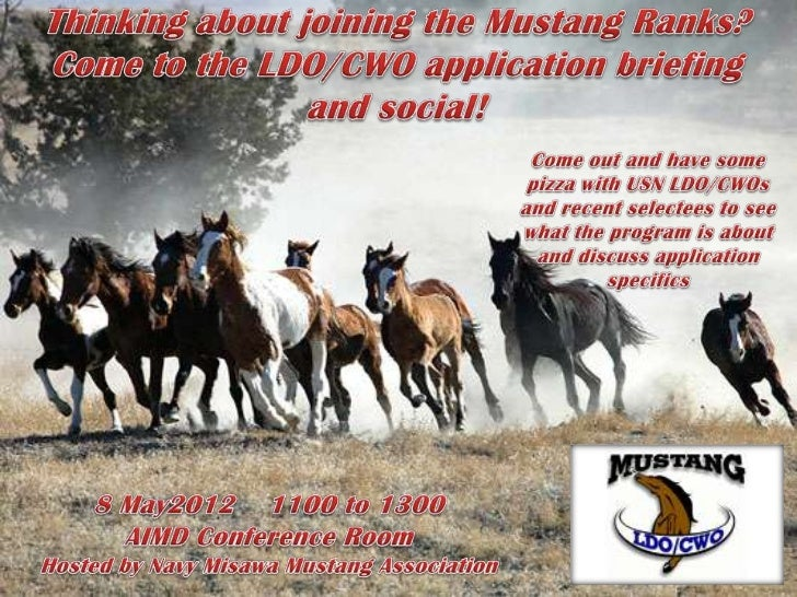 Mustang Application Brief