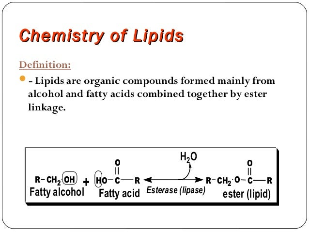 Chemistry of lipids MUHAMMAD MUSTANSAR