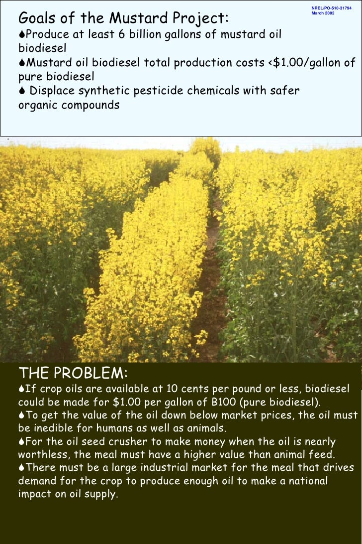 Goals of the Mustard Project:                                                           NREL/PO-510-31794                 ...