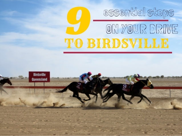 9TO BIRDSVILLE essential stops ON YOUR DRIVE