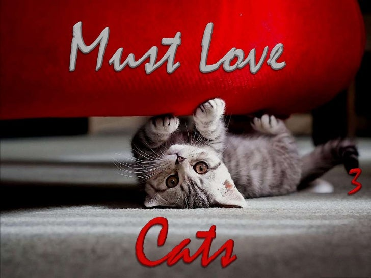 MUST LOVE CATS 3