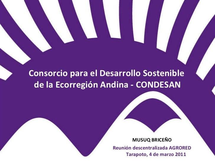 Consorcio para el Desarrollo Sostenible  de la Ecorregión Andina - CONDESAN <ul><li>MUSUQ BRICEÑO </li></ul><ul><li>Reunió...