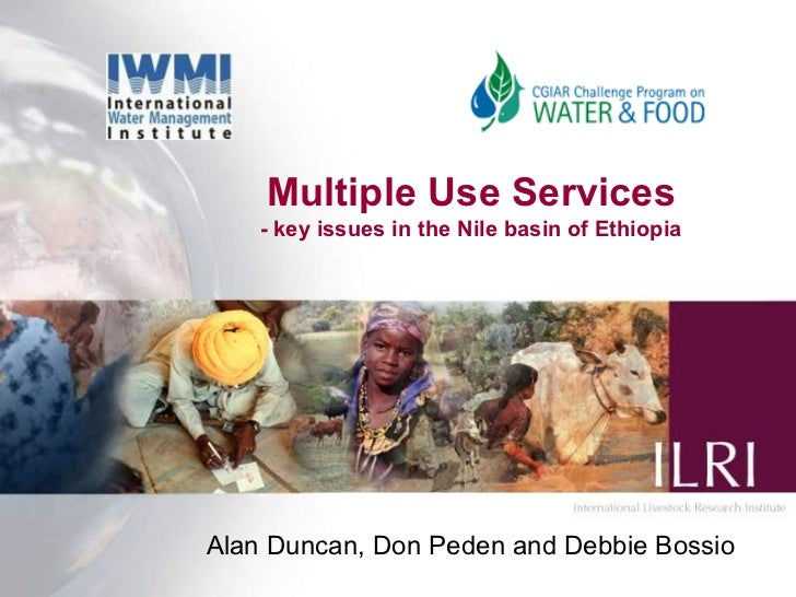 Multiple Use Services - key issues in the Nile basin of Ethiopia Alan Duncan, Don Peden and Debbie Bossio