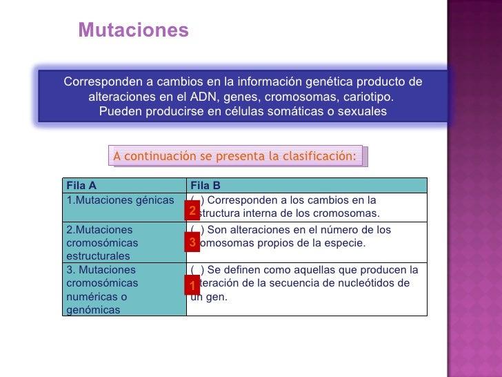 Mutaciones-biologia comun Slide 2