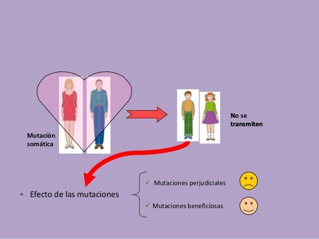 Mutacion y adn Slide 3