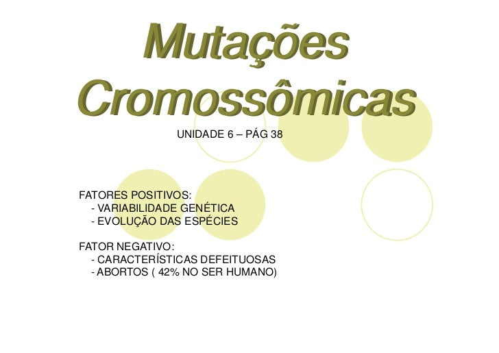 MutaçõesCromossômicas               UNIDADE 6 – PÁG 38FATORES POSITIVOS:  - VARIABILIDADE GENÉTICA  - EVOLUÇÃO DAS ESPÉCIE...