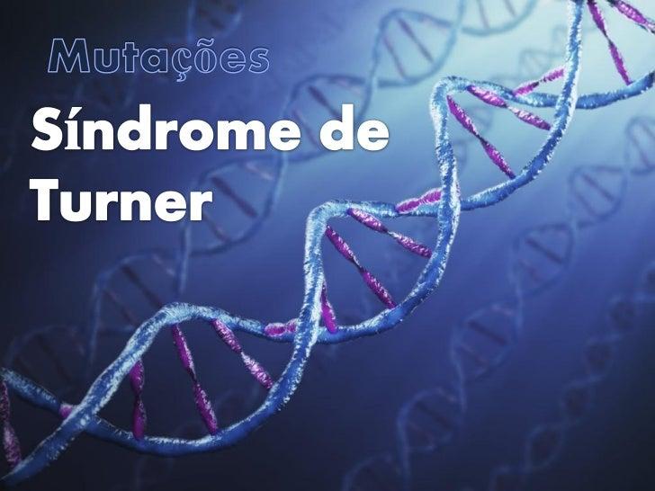 Mutações         Alterações bruscas do material genético• As mutações são raras eraramente são hereditárias;• Os    efeito...