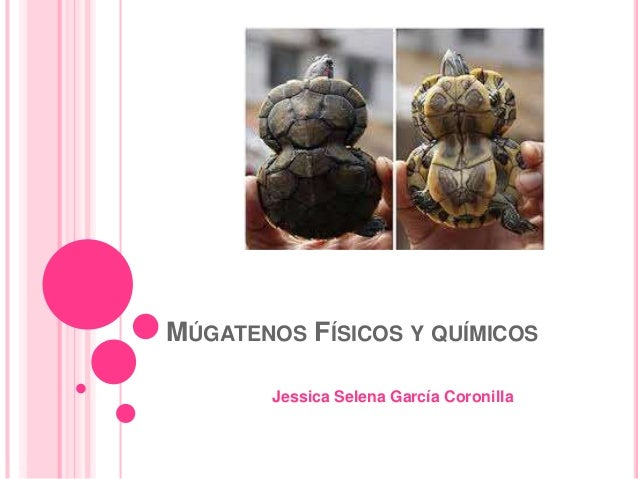 Mutagenos fisicos y quimicos - Mas y mas curriculum ...
