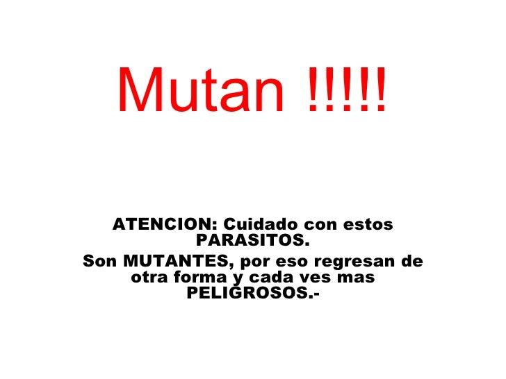 Mutan !!!!! ATENCION: Cuidado con estos PARASITOS. Son MUTANTES, por eso regresan de otra forma y cada ves mas PELIGROSOS.-