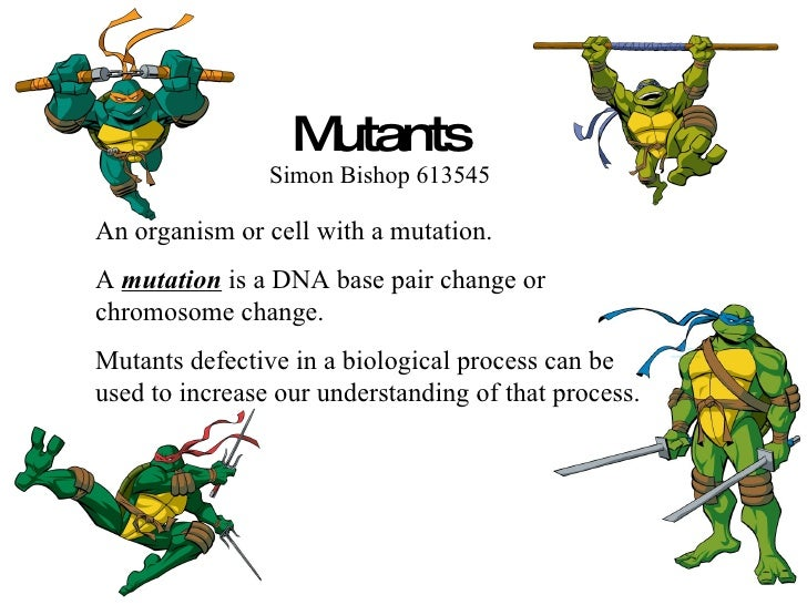 Mutants Simon Bishop 613545 An organism or cell with a mutation. A  mutation  is a DNA base pair change or chromosome chan...